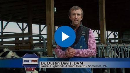 Dr Dustin Davis DVM